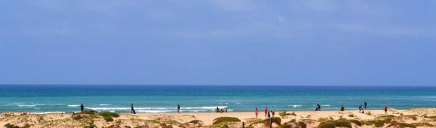 Sal beach clean