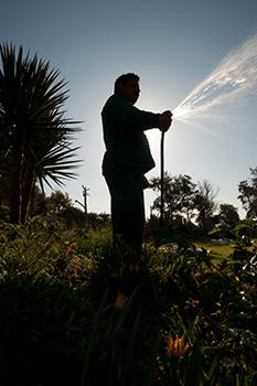 gardens irrigating efficiently